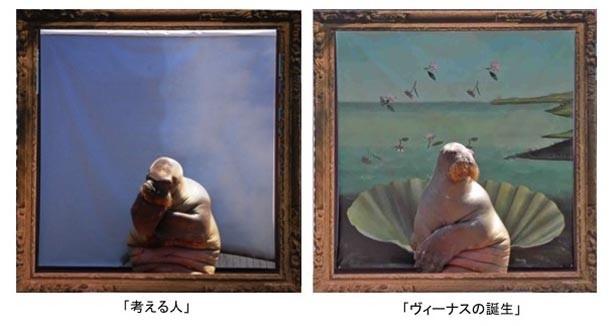 セイウチの「ピコ」による「考える人」や「ヴィーナスの誕生」