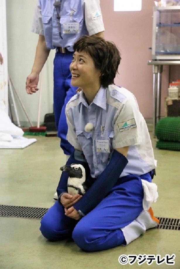 「おじゃMAP!!スペシャル」で香取慎吾と再び共演する上野樹里