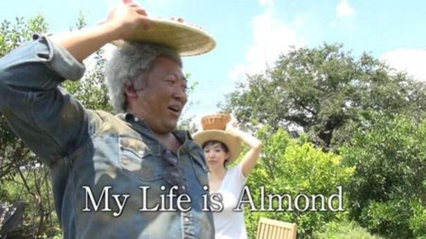 収穫したアーモンドを頭に乗せ、なぜか踊り出すジョージ・ヴァンダム