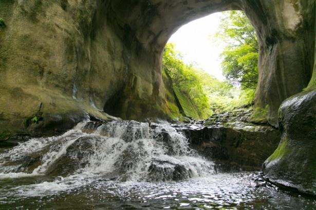 洞窟のような形状。高さはおよそ15m