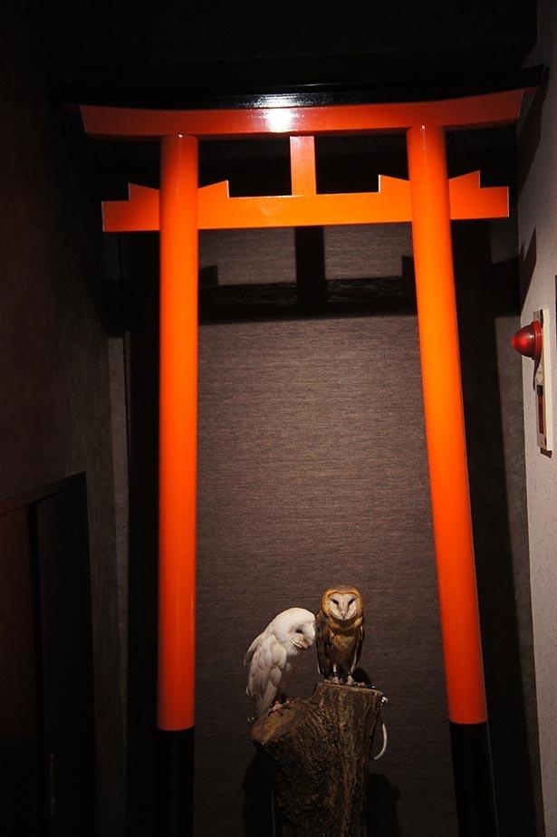 「和」をイメージしたこだわりの空間は、フォトジェニック