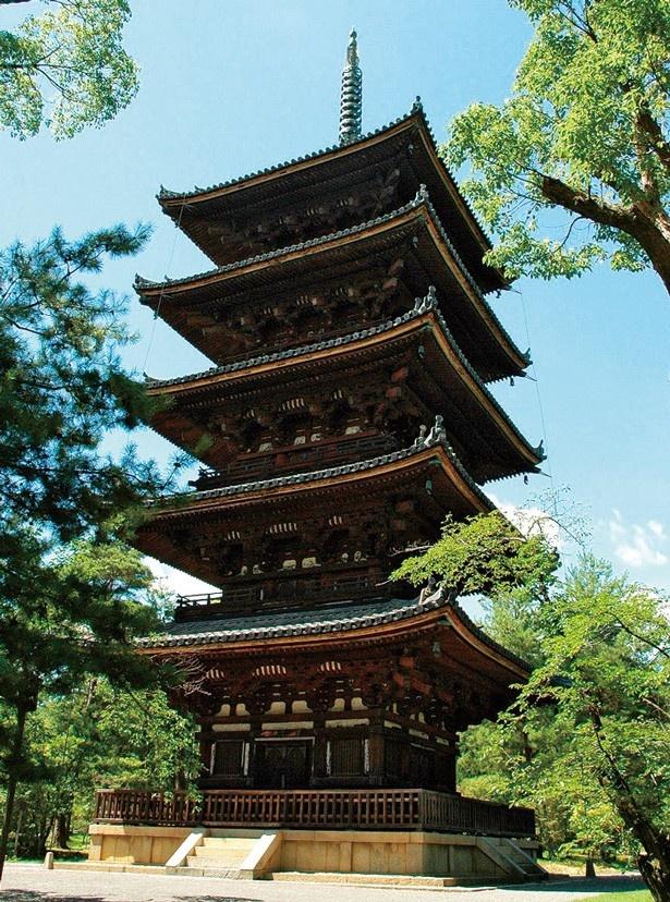 名跡が並ぶきぬかけの路を通って、由緒ある龍安寺や仁和寺を巡ることができる/仁和寺