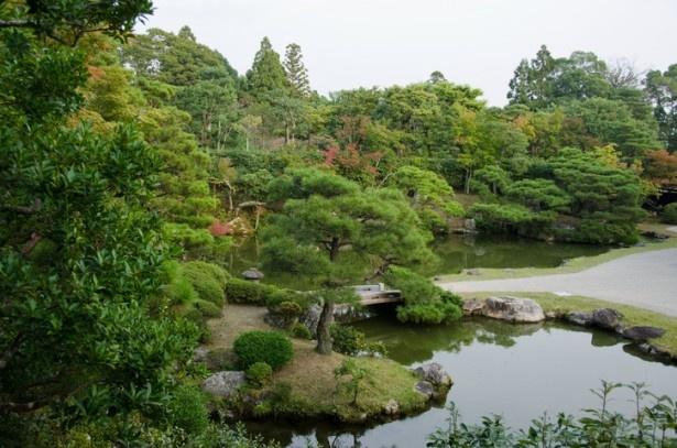 【写真を見る】秋になると紅葉も楽しめる宸殿の庭