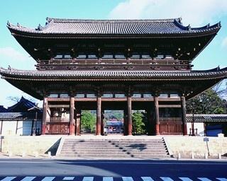五重塔や国宝が立ち並ぶ!5分で知る仁和寺の見どころ