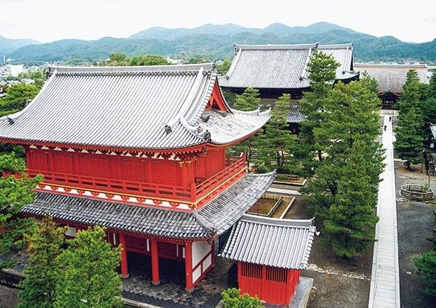 境内唯一の朱塗りの建物「山門」。その奥に「仏殿」などが立つ