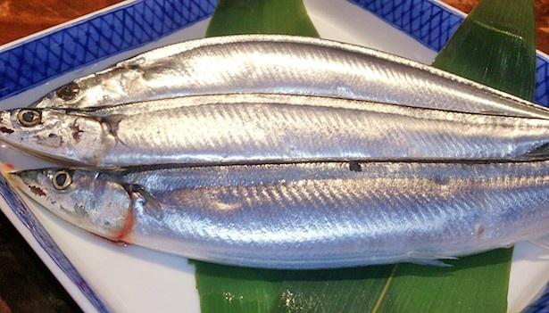 【写真を見る】極上秋刀魚を食べて一足先に秋を味わおう!