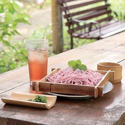 静岡県菊川市の「ブルーベリーの郷」で食べられるのは、世にも珍しい「ブルーベリーパスタ」(500円) (写真右)