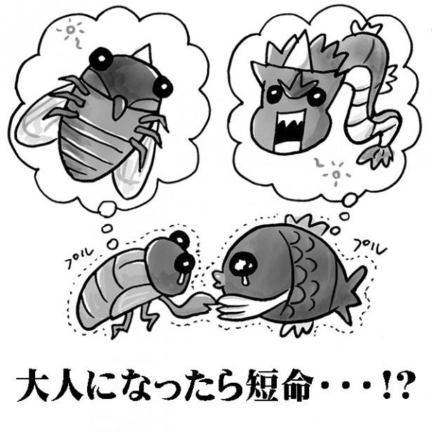 """【図を見る】科学が暴いた""""進化後""""の生命のヒミツ!"""