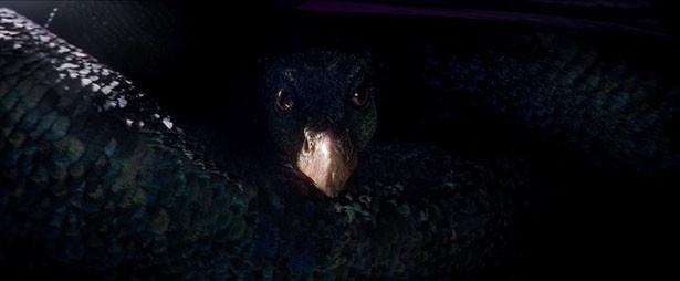 【写真を見る】謎めいた魔法動物も続々登場!