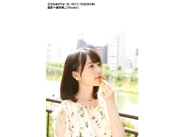 『からあげウォーカー2017』(KADOKAWA)