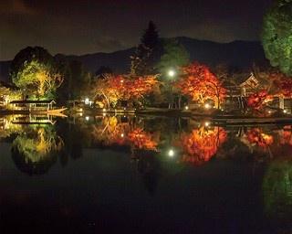 日本最古の人工林泉を散策!5分で知る大覚寺の見どころ