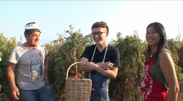 【写真を見る】ロバート・馬場裕之は料理に悩む日本人妻のため、トマトの名産地を訪れて「お宝の山だ」と感動!