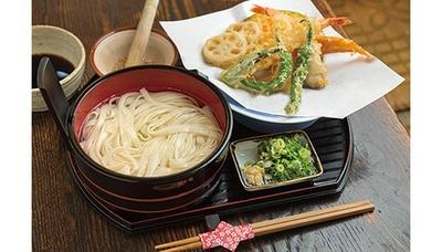 名物の「天たらいうどん」(1360円)は、げたてのサクサク天ぷらと、たらいに入ったうどんをセットで提供/手打ちうどん さが美