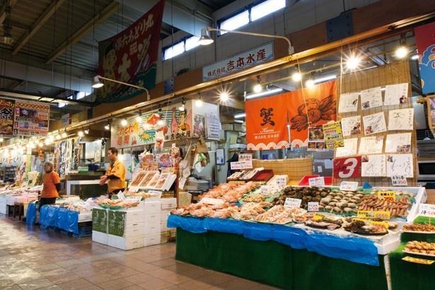 現地でしか出合えない新鮮魚介を求めて漁港&市場へ!