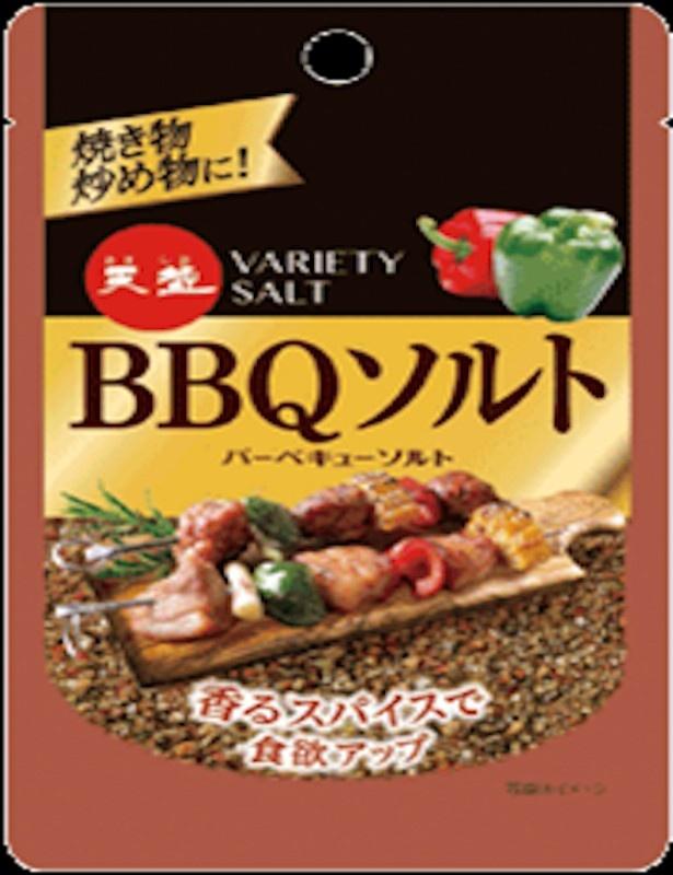 【写真を見る】味付けが面倒な肉料理も「BBQソルト」で完成!
