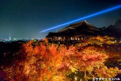 奥の院の舞台からは、眼下に広がる紅葉と本堂全景、京都市街の町並みが一望できる