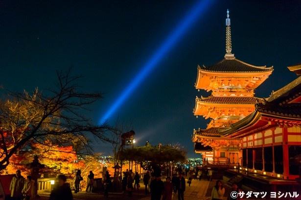 【写真を見る】仁王門をくぐり経堂の周辺から振り向くと、勇壮な三重塔と紅葉、京都市街のきらめく夜景が見渡せる