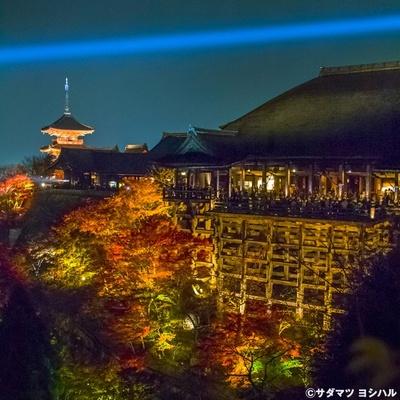 奥の院の舞台から少し足を進めると、本堂全景、奥には三重塔、それらを彩る紅葉が見渡せる絶景ポイント!