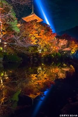 放生池に映る真っ赤な木々と三重塔、観音慈悲光が神秘的