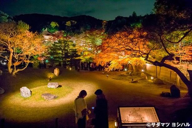 【写真を見る】書院から臥龍池方向を眺めれば、東山の穏やかな山並みを借景とした庭園が広がる