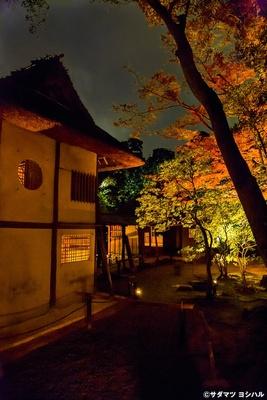 傘亭と時雨亭の裏側で見られる和情緒たっぷりな2つの茶室と紅葉のコラボレーションは必見!