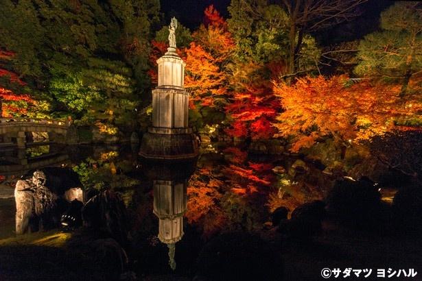 友禅苑の補陀落池には、鮮やかに色付いた真っ赤なカエデをバックに聖観音像が。池に映る紅葉と像の景色も見事!
