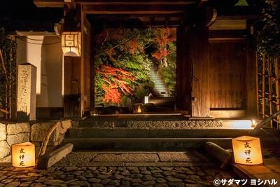 【写真を見る】友禅苑では、入口を額縁に見立てて紅葉を眺めることもできるので注目!