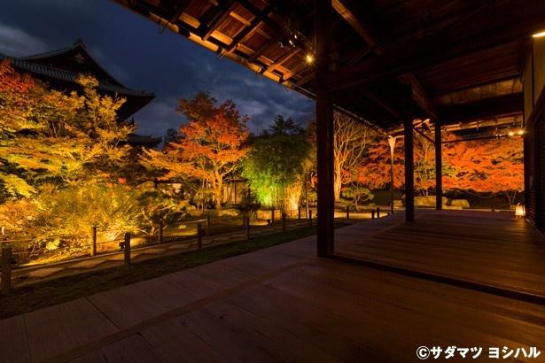 堂をさらに進むと、南禅寺のシンボルとも言える三門を奥に、うっすらと眺められるポイントがあるので要チェック