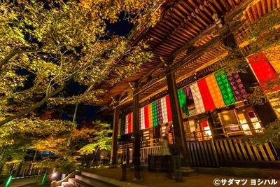 本尊の阿弥陀如来立像が安置される阿弥陀堂は、極彩色と紅葉の鮮やかさがとても印象に残るスポット