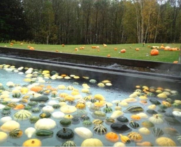 露天風呂では湯船にかぼちゃが浮かぶ
