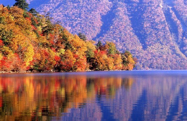 湖面が真っ赤に彩られる中禅寺湖は、日光の代表的な紅葉名所