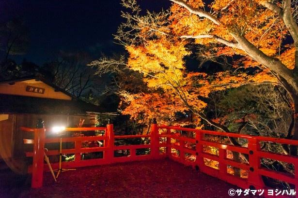 【写真を見る】もみじ苑入口付近にある茶室・梅交軒に設けられた舞台からの眺めは絶景!