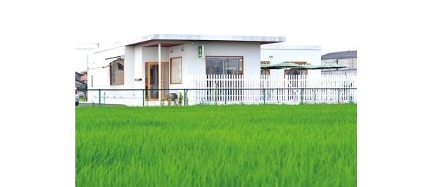 BON POINT CARDINのひと際目をひく白い建物。夏場は緑と白のコントラストが美しい。窓が大きいから眺めも抜群