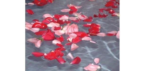湯遊三昧 湯ゆ からく花楽の1番人気は、本物のバラの花びらをたっぷり浮かべたバラ湯などの「替わり湯」。季節ごとのお風呂が楽しい