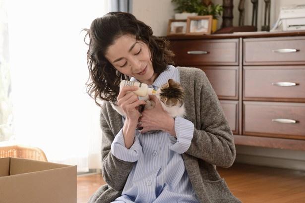 【写真を見る】拾ってきた5匹の子猫の世話をする麻子
