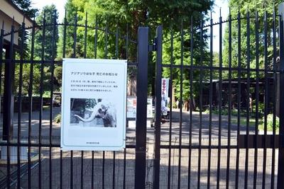「井の頭自然文化園」の入り口には、はな子についての張り紙が