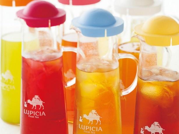 見た目にも鮮やかなお茶の数々。お気に入りの一杯が見つかるかも!?