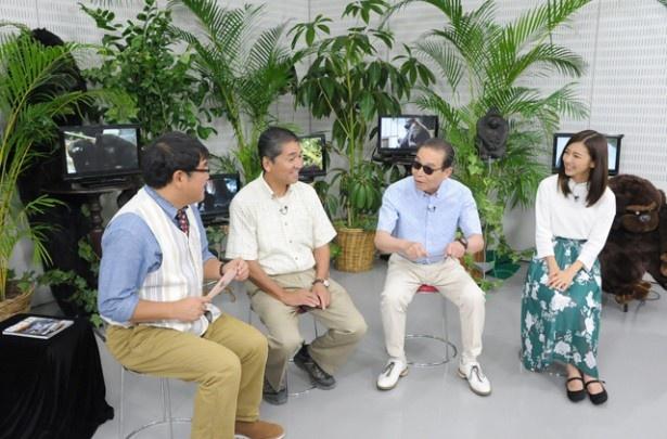 真野恵里菜が「タモリ倶楽部」に初出演。タモリ、カンニング竹山と共に、ゴリラについて学ぶ
