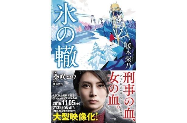 『氷の轍』(桜木紫乃/小学館)