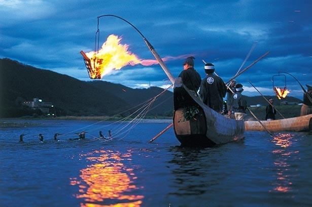 1300年以上続く伝統漁法、長良川の鵜飼