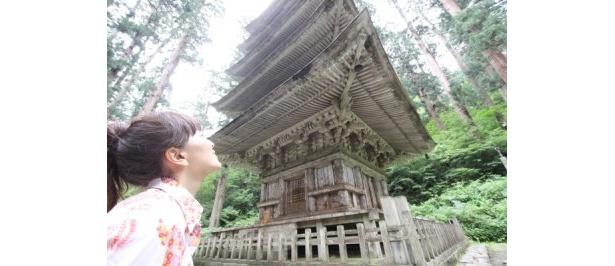 杉並木にたたずむ国宝五重塔は幻想的…