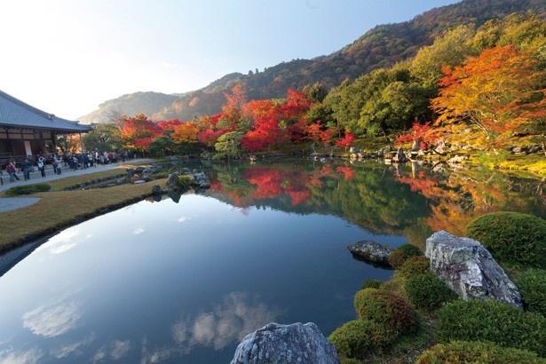 開山・夢窓国師作と伝わる、嵐山を代表する名庭園・曹源池庭園。鏡のように映り込む紅葉は必見/天龍寺