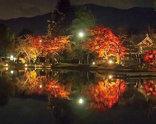 まるで絵画のような美しさ!水面に映る大覚寺の紅葉ライトアップ