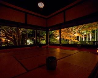 額縁庭園の鮮やかな紅葉が楽しめる宝泉院ライトアップ