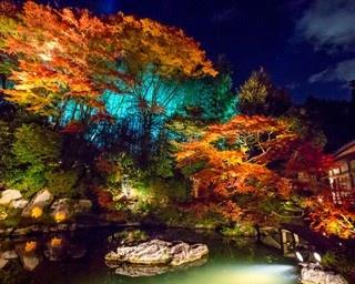 青い光と紅葉に包まれた別世界!青蓮院門跡のライトアップ
