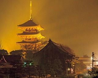 暗闇に浮かぶ絢爛な五重塔を紅葉が彩る!東寺のライトアップ