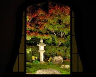 夕食と光の庭園を楽しむ東福寺天得院の紅葉ライトアップ