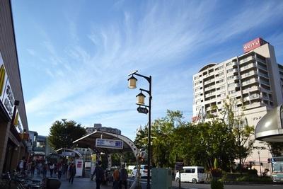 清瀬駅北口には大型スーパーがあり、駅前広場の中央には季節で表情を変える木々が植えられている