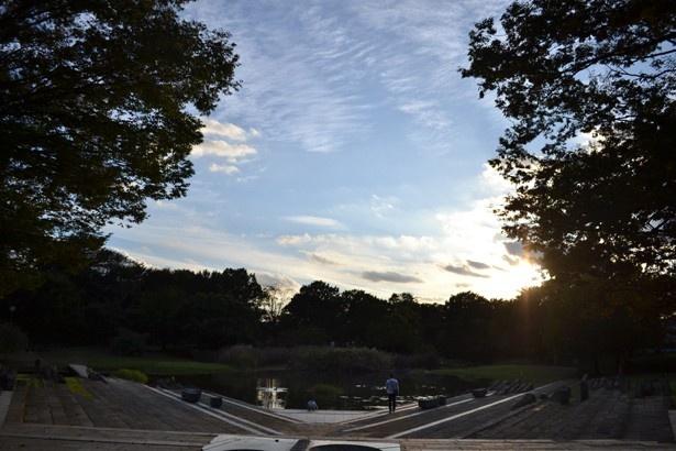 夕暮れ時の「清瀬金山緑地公園」