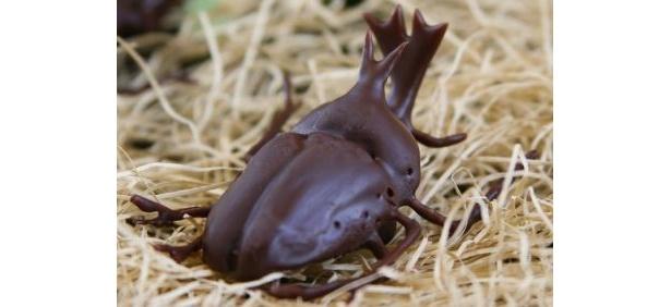 1つ1つ手作りされた繊細な形が自慢!「かぶと虫成虫チョコレート」(1000円)